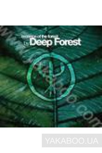 Фото - Deep Forest: Essence of the Forest