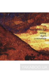 Фото - Tindersticks: Falling Down a Mountain
