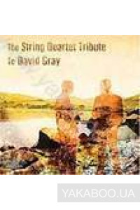 Фото - The String Quartet Tribute to David Gray