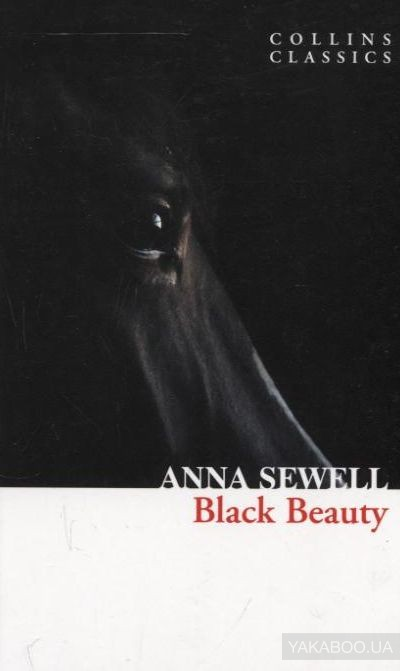 Black Beauty фото