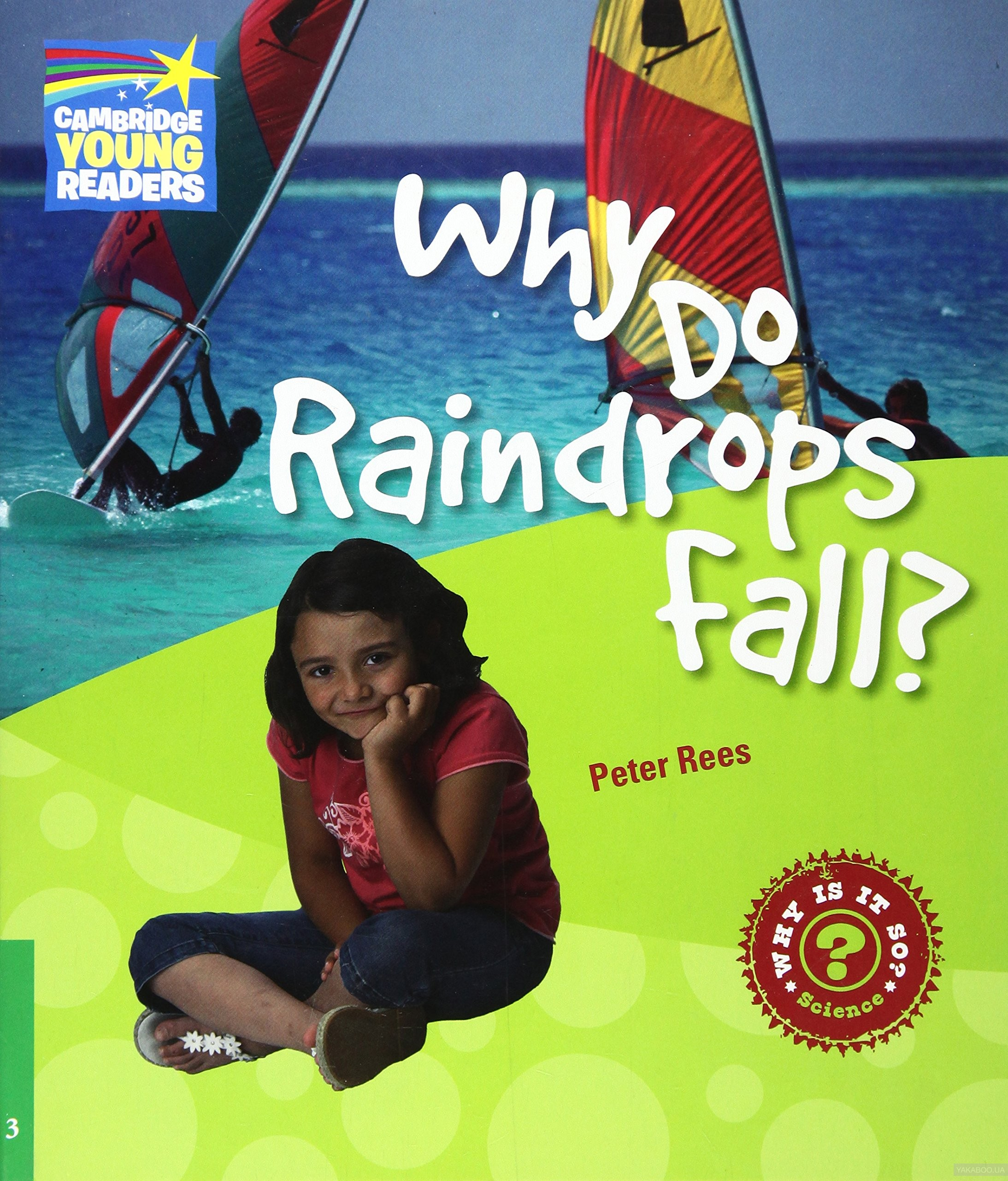 Why Do Raindrops Fall? Level 3 фото