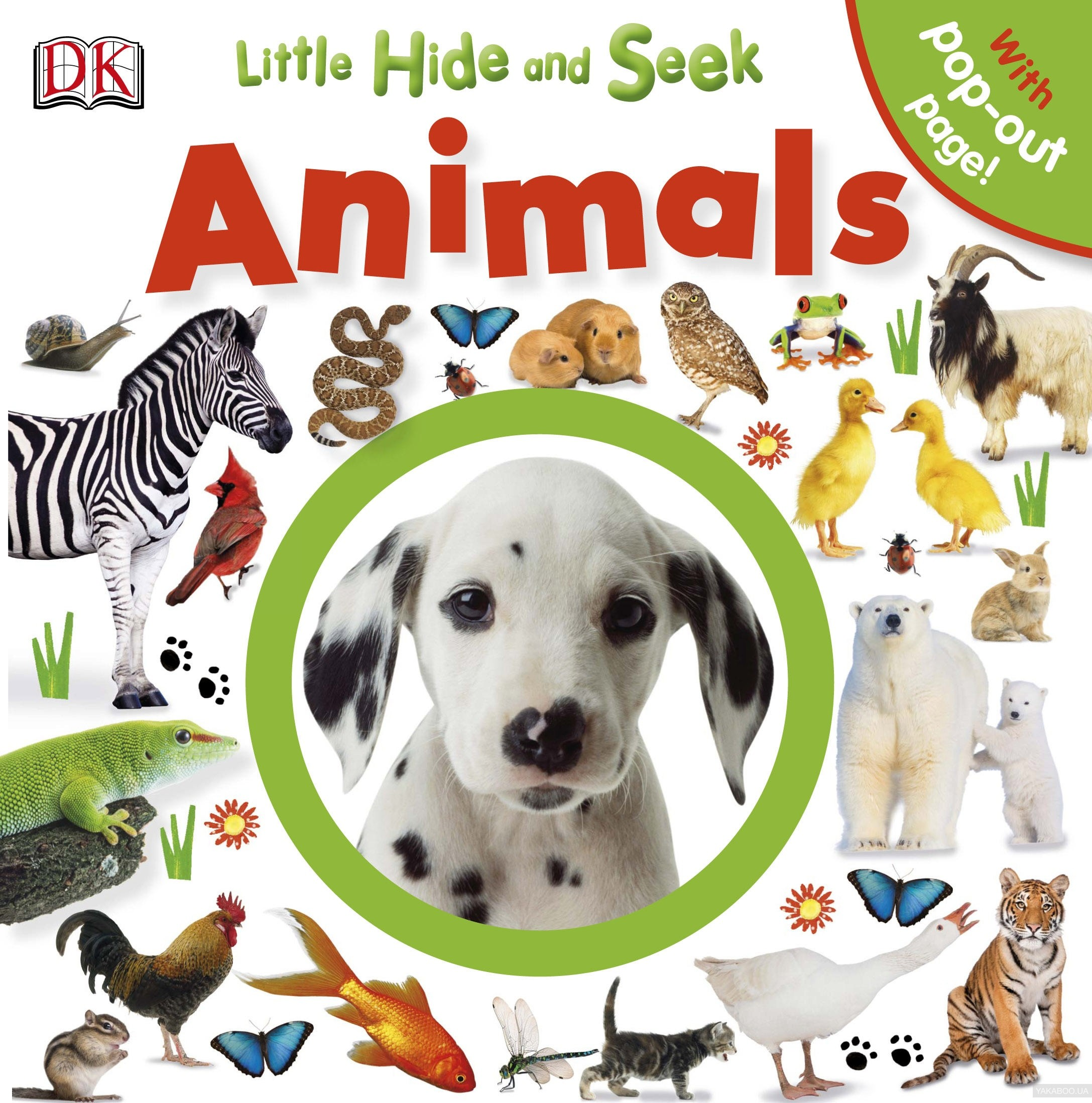 Little Hide and Seek Animals
