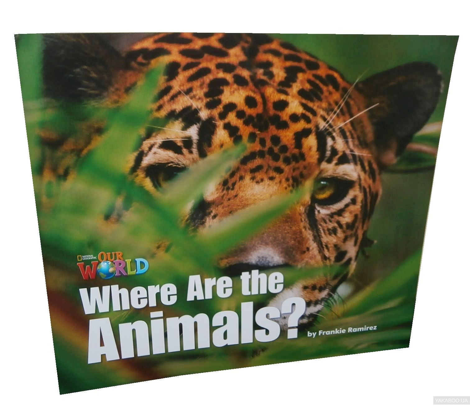 Our World Readers. Where are the Animals? Big Book