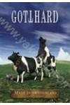 Gotthard: Made in Switzerland. Live in Zurich (DVD)