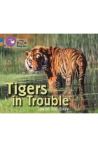 Купить - Книги - Big Cat Progress 4/12 Tigers in Trouble