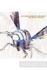 Фото - Animal Liberation Orchestra: Fly Between Falls