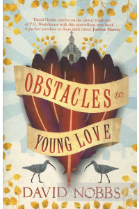 Фото - Obstacles to Young Love