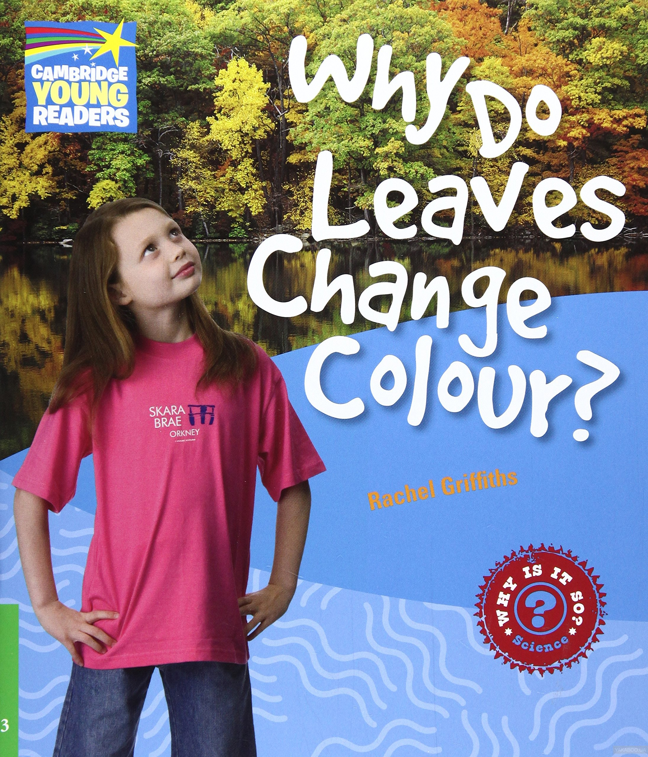 Why do leaves change colour? level 3