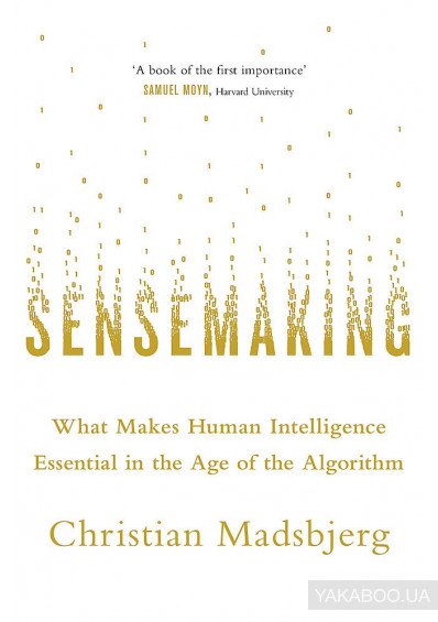 Фото - Sensemaking: What Makes Human Intelligence Essential in the Age of the Algorithm