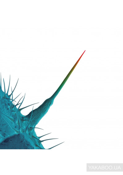 Фото - Peter Gabriel: And I'll Scratch Yours (Import)