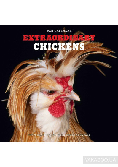 Фото - Extraordinary Chickens 2021 Wall Calendar