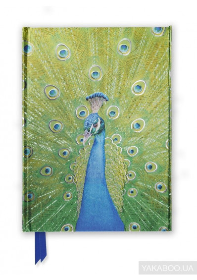 Фото - Peacock in Blue & Green. Foiled Journal