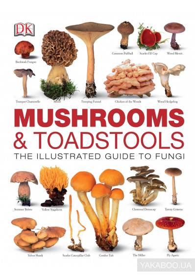 Фото - Mushrooms & Toadstools. The Illustrated Guide to Fungi