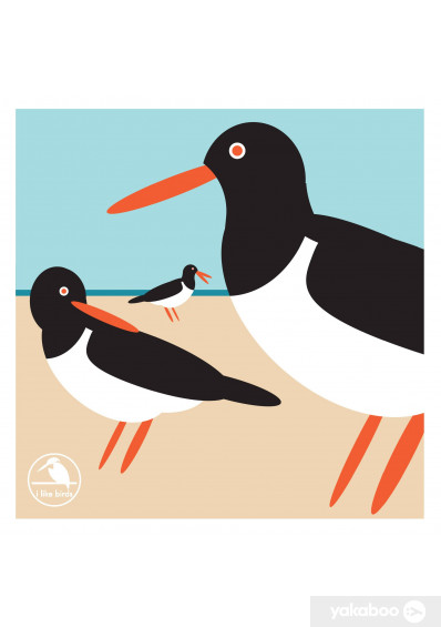 Фото - I Like Birds: Oyster Catcher Boxed Notecards