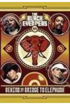 Купить - Музыка - The Black Eyed Peas: Behind the Bridge to Elephunk (DVD)