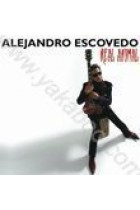 Купить - Музыка - Alejandro Escovedo: Real Animal (Import)