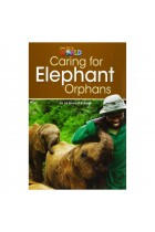 Купить - Книги - Caring for Elephant Orphans Reader