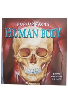 Купить - Книги - Pop-Up Facts. Human Body