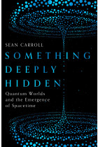 Something Deeply Hidden. Quantum Worlds and the Emergence of Spacetime