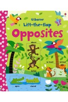 Купить - Книги - Lift-the-Flap: Opposites