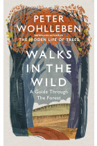 Купить - Книги - Walks in the Wild: A guide through the forest with Peter Wohlleben