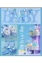 Купить - Блокноты - Фотоальбом EVG Baby collage Blue (20sheet Baby collage Blue w/box)