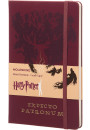 Купити - Нотатник Moleskine Harry Potter Expecto Patronum в лінію (LEHPAQP060)