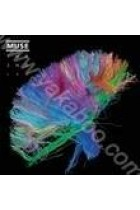 Купити - Музика - Muse: The 2nd Law (Import)